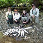 Freshwater Coho Salmon